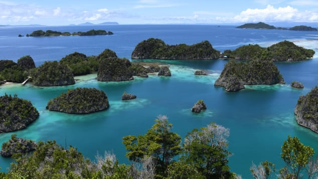 Raja Ampat's coral reefs are considered among the best in the world.