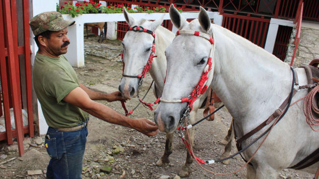 02 things to do colombia - horse riding at Cafetal de la Trinidad