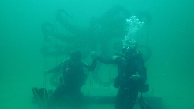 Anamorphous-Octopus_underwater_Allison-Wickey