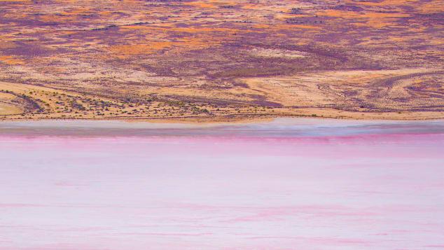 Φιλανθρωπία-Κατιά-Θάντα-Λίμνη-Έιρε-με-Wrightsair --- (1)
