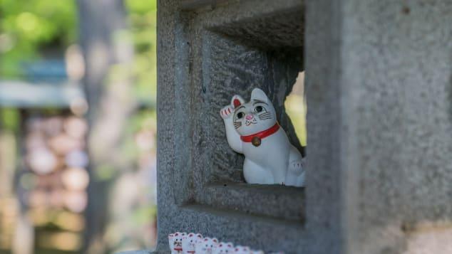 Gotokuji Temple (Tokyo, Japan) cats by Joshua Mellin @joshuamellin jdmellin@gmail.com(19)