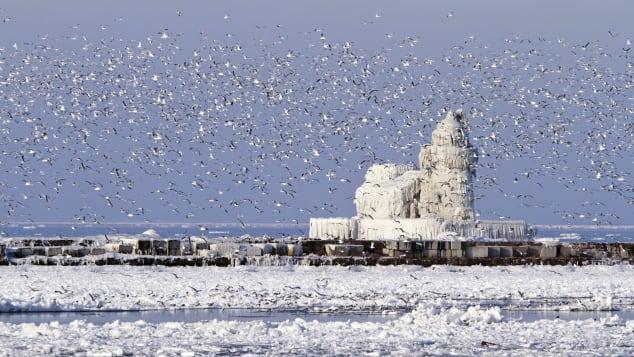 Farol de West Pierhead, Porto de Cleveland, Ohio, EUA Dreamstime Bryan Busovicki