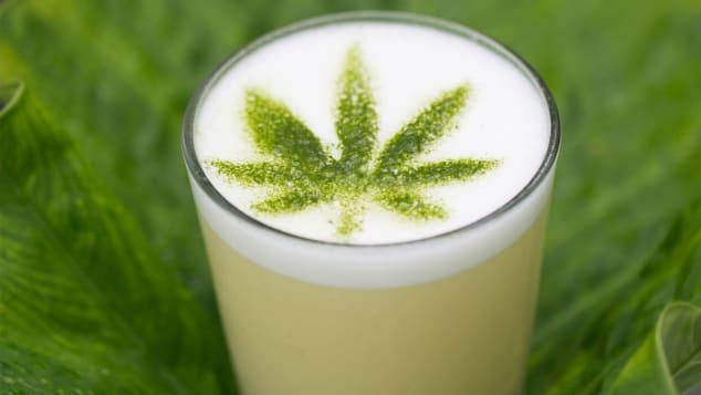 plant medicine miami