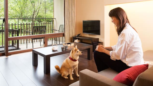 The hotel's specially designed dog rooms feature pet towels, bowls, an outdoor dog run and even private hot spring baths for both pooches and people.