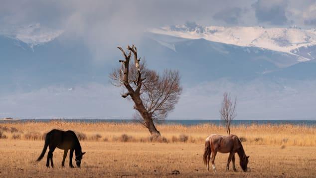 kyrgyzstan albert dros -11