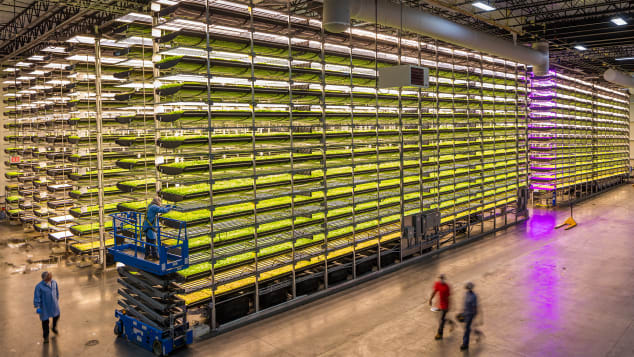 The indoor farming practice utilizes 95% less water than field-farmed food, and boasts a much higher yield.