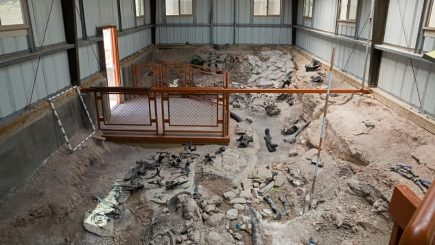 Since it was first excavated in the 1920s, some 12,000 bones belonging to at least 74 dinosaurs have been unearthed at Cleveland-Lloyd Dinosaur Quarry, now the site of Jurassic National Monument.
