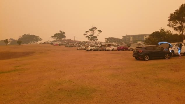 During the New Year's Eve fire, the Narooma Golf Club offered shelter to around 500 people. Cars and caravans were parked on the green.