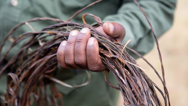 A ranger on a de-snaring patrol in Kenya's Mara Triangle holds items he's collected.