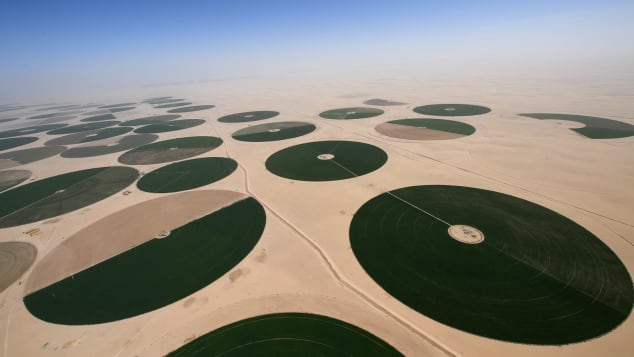 Green oases stand out amid the Saudi desert landscape. FRANCK FIFE/AFP via Getty Images