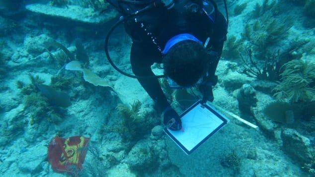 Diving With A Purpose lead instructor Kamau Sadiki creates an in-situ drawing of a shipwreck artifact.