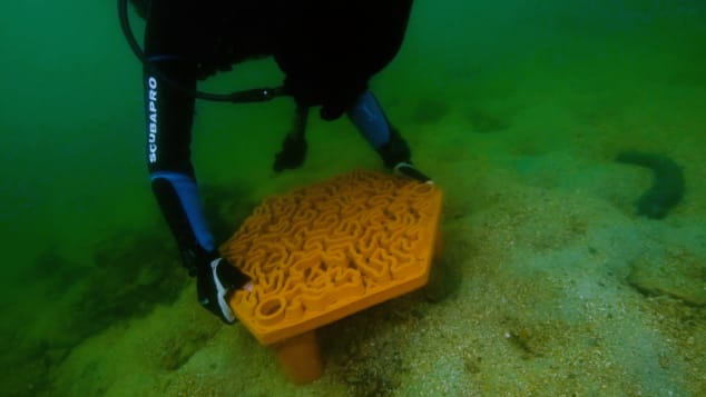 A diver positioning a 3D-printed terracotta tile on the sea floor.