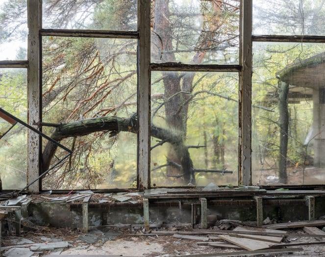 chernobyl david mcmillan 1