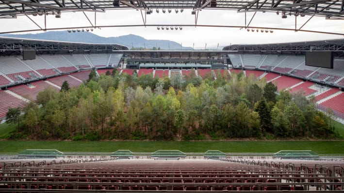 Forest-in-football-stadium---Klaus-Littmann,-FOR-FOREST---The-Unending-Attraction-of-Nature,-Wörthersee-Stadium-Klagenfurt,-©-Gerhard-Maurer-(1)