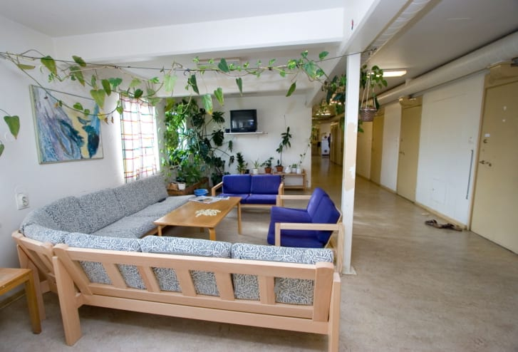 The Swedish Prison and Probation service prioritize access to nature, shown here in a common room in Kumla prison, another prison in Sweden.