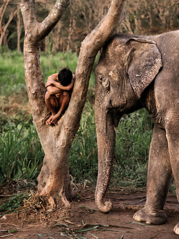 A Mahout and his elephant at a sanctuary. Chiang Mai, Thailand, 2010.