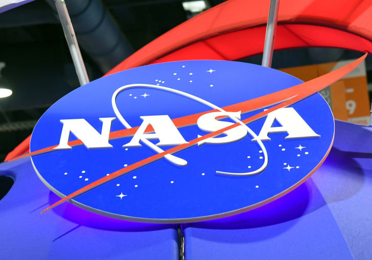 "NASA的官方徽标""肉丸""于1959年首次引入"