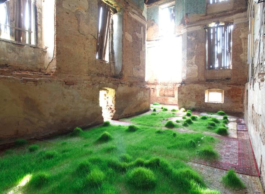1 / 12  Martin Roth Grew Several Species Of Grass On An Assortment Of  Valuable Rugs For An Installation Initially Staged In Austria. He Is Now  Showing This ...