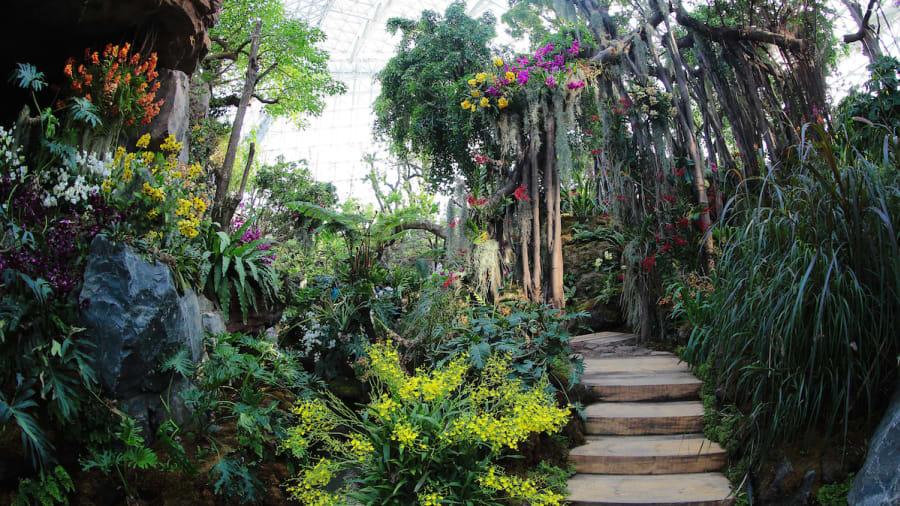 qingdao horticultural expo - Qingdao Garden