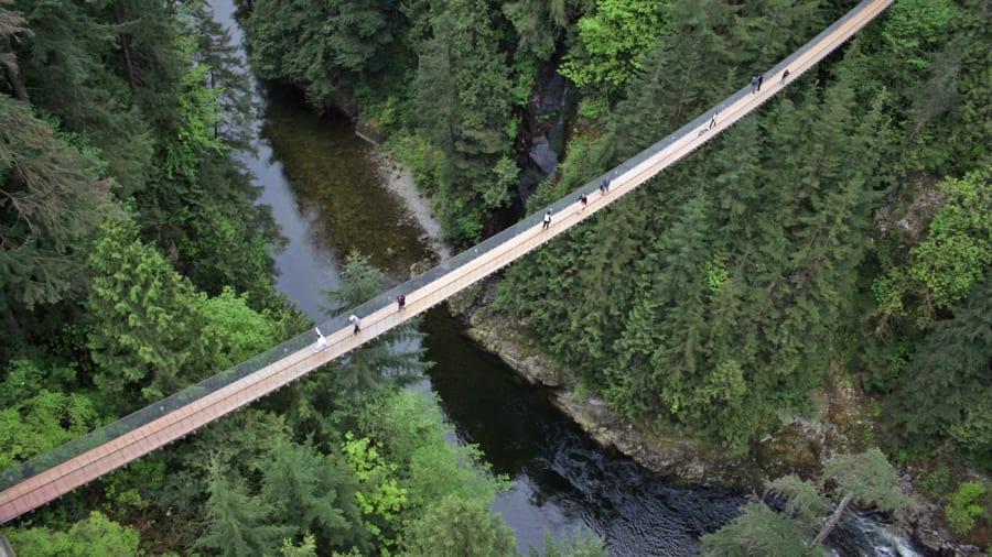 footbridge capilano