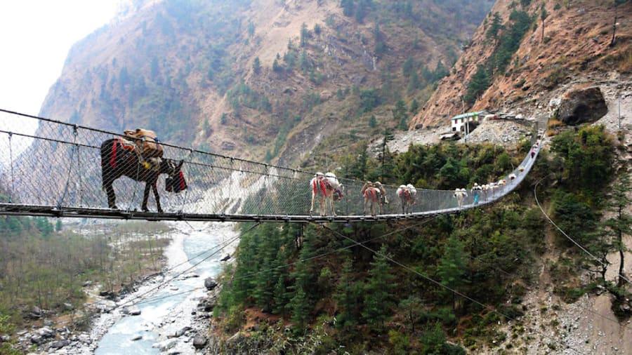 footbridge hanging bridge ghasa