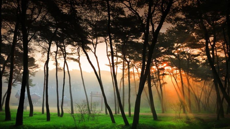 50 beautiful places to visit in south korea cnn travel beautiful south korea sareung mightylinksfo