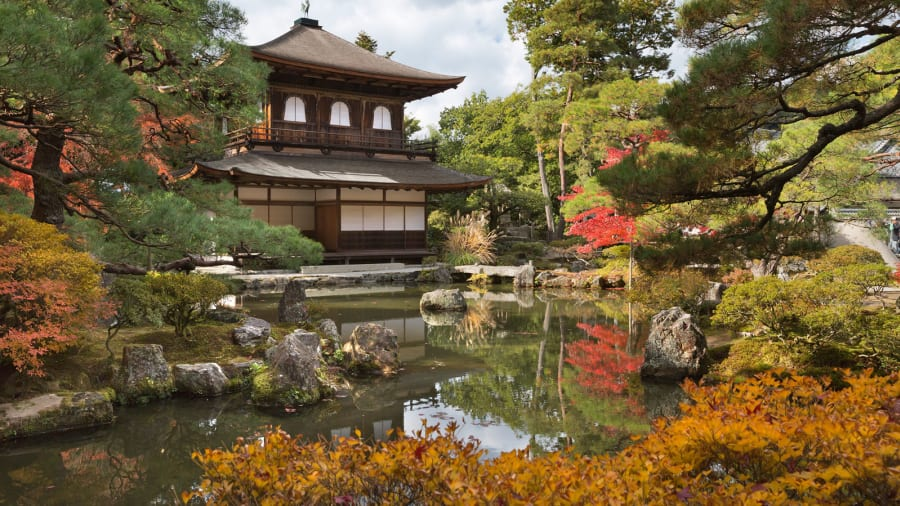 Image result for japan picture