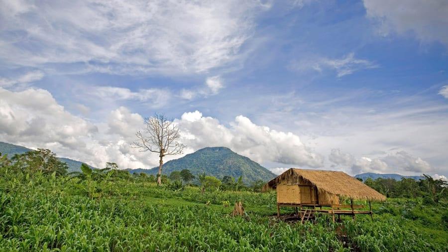 02 Laos Bolaven Plateau