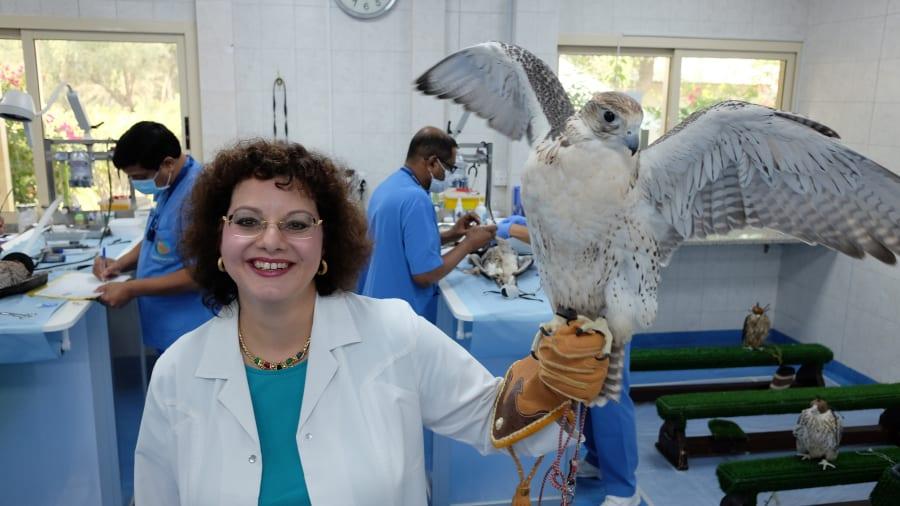 falcon-Margit-Gabriele-Muller