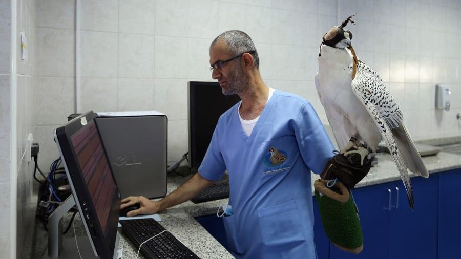 falcon-medic