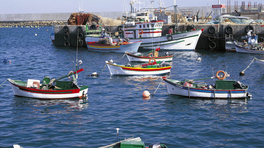 Portugal wild Algarve fishing boats