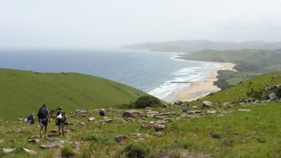 01 mkambati wild coast