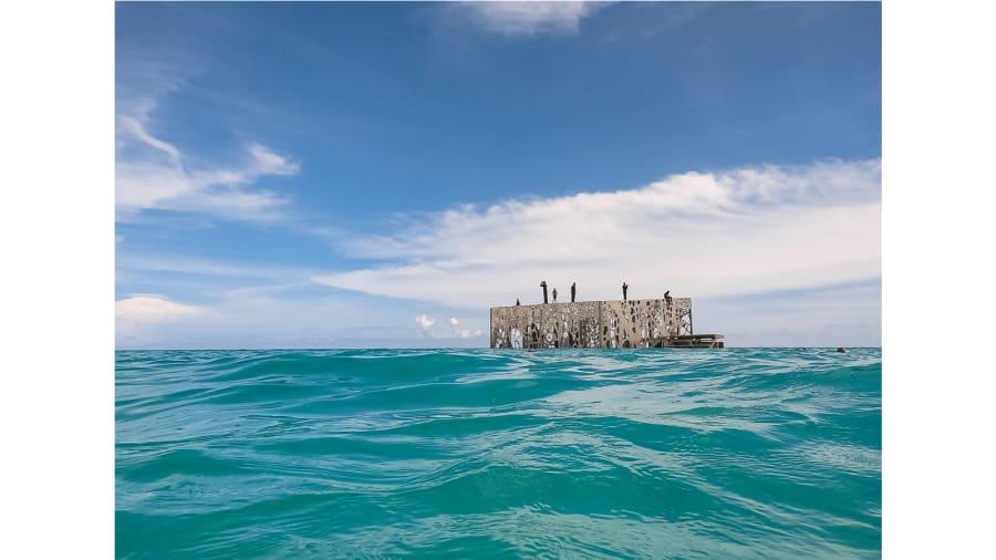 Coralarium - Fairmont Maldives Sirru Fen Fushi