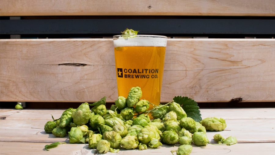 coalition brewing CBD beer