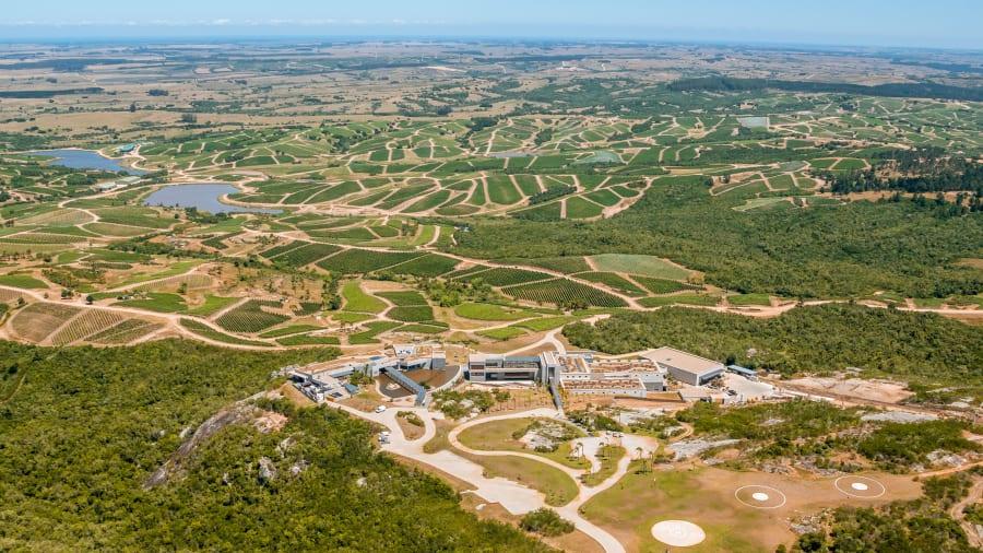 10 Bodega Garzon winery Uruguay