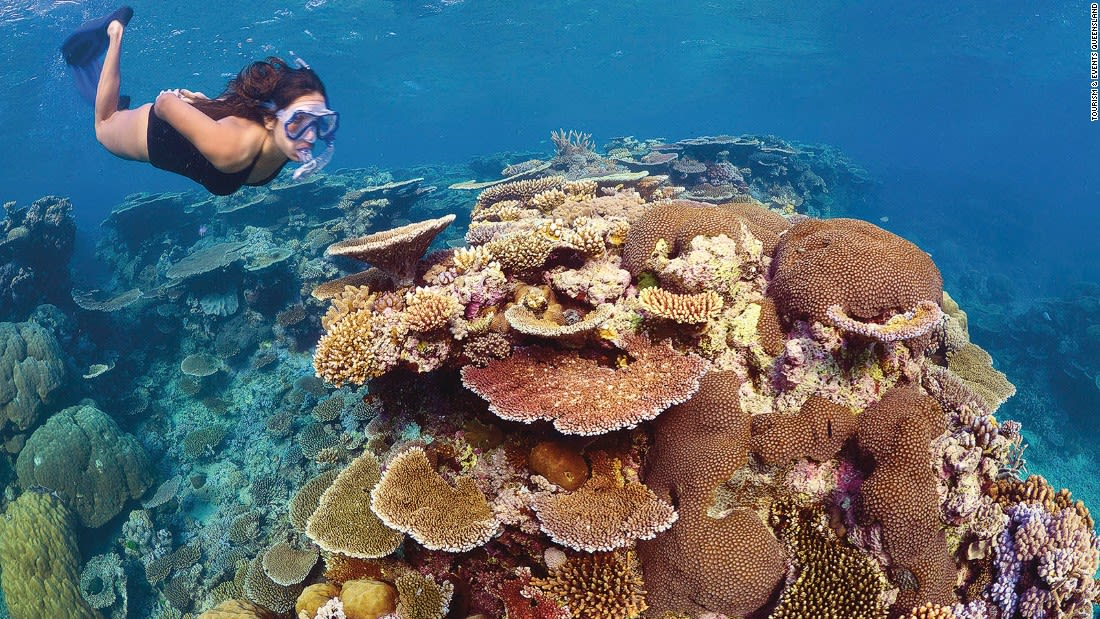 Colorful places Great Barrier Reef