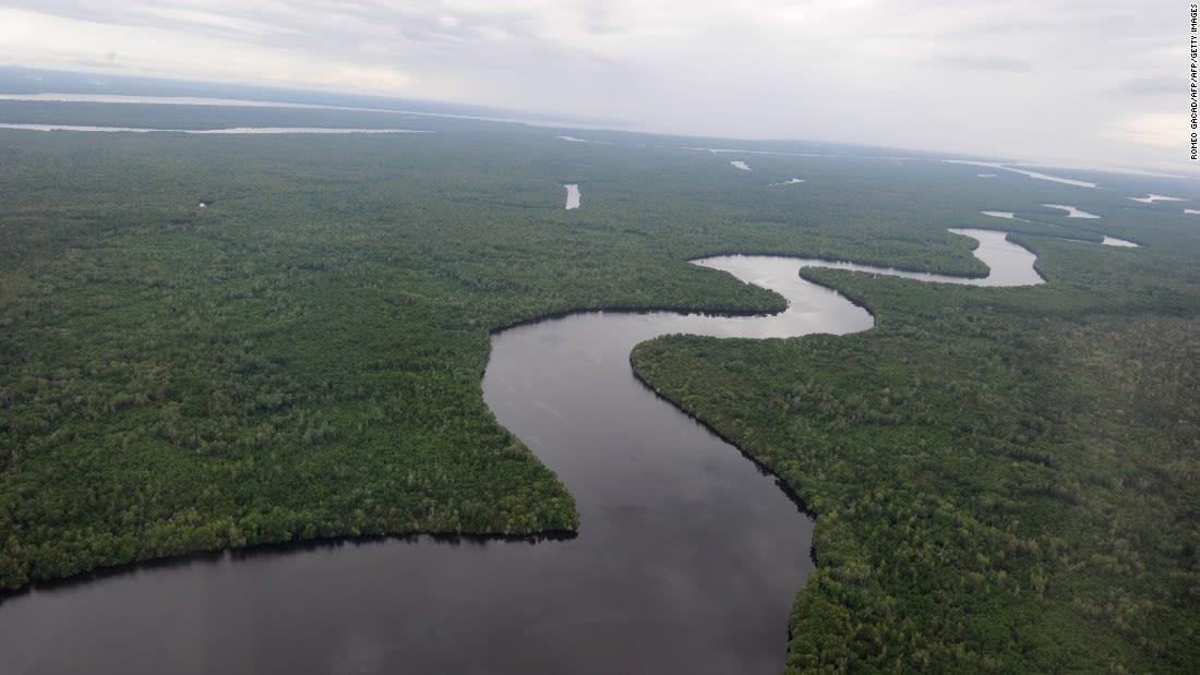 Borneo's rainforests brunei