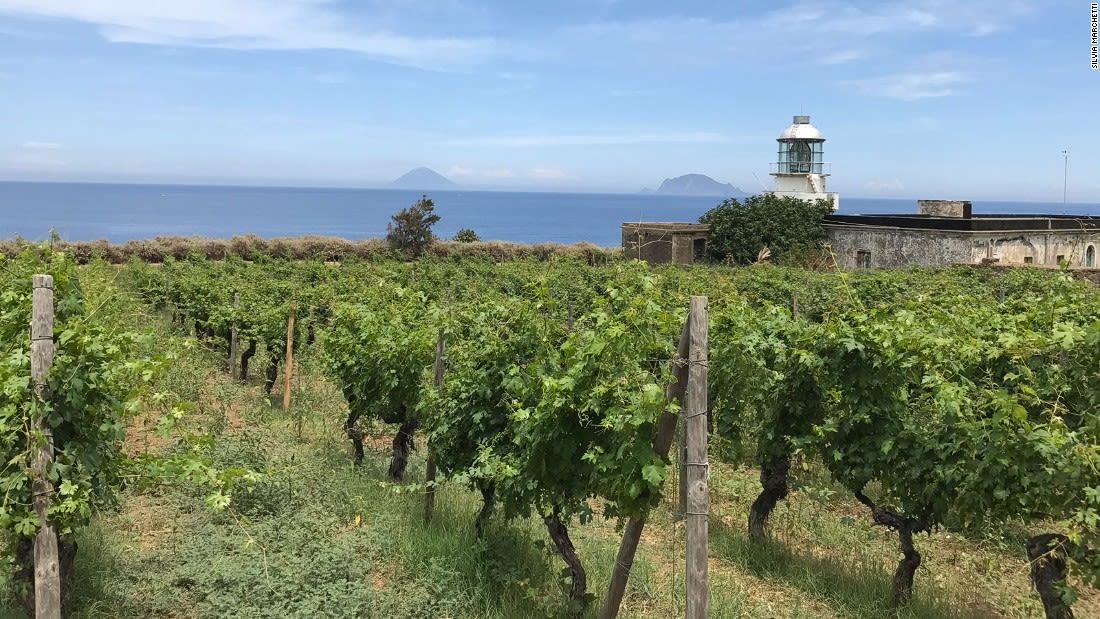 Aeolian-Islands---Salina-Malvasia-vineyards---Silivia-Marchetti