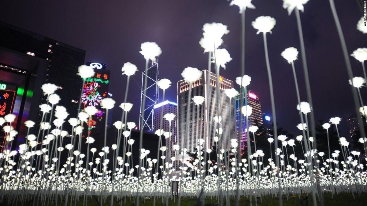 Light Rose Garden illuminates Hong Kong's skyline | CNN Travel