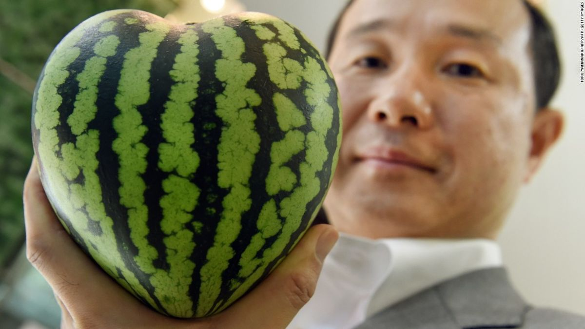 $27,000 melons? Japan's luxury fruit obsession   CNN Travel