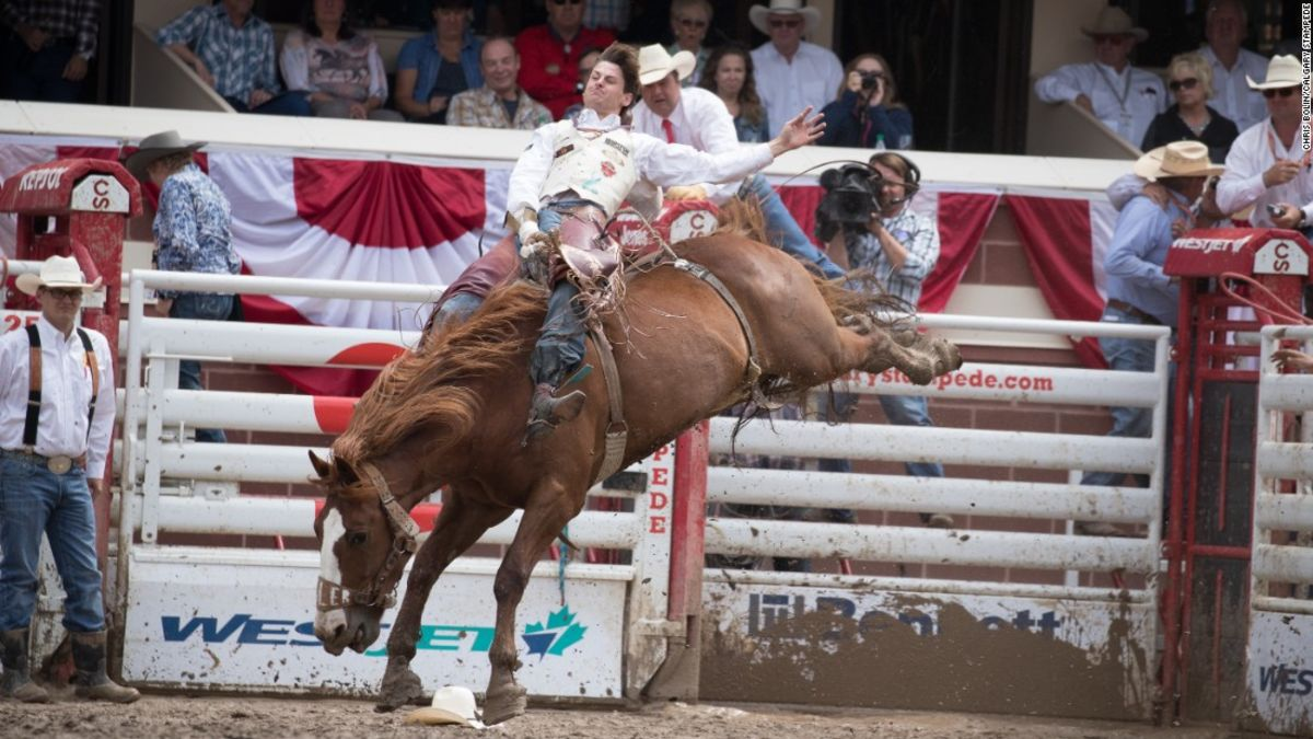 Calgary Stampede 2018 7 Reasons To Jump On The Bandwagon