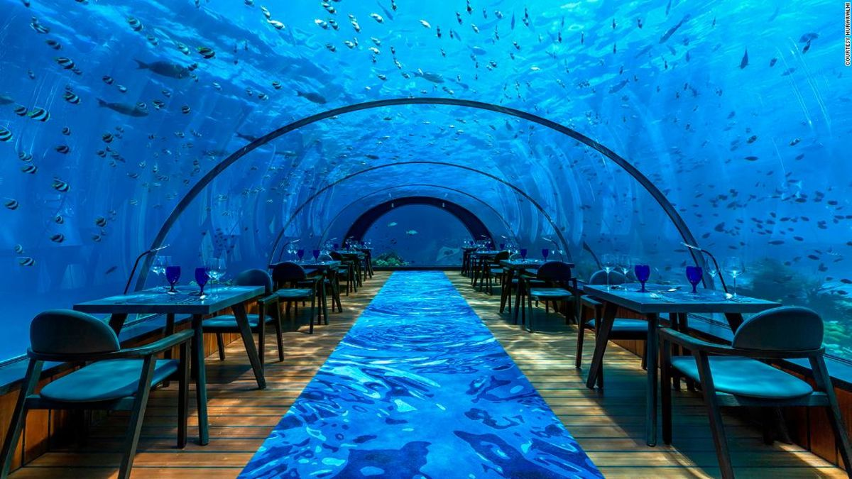 Dine with the fishes at world's largest all-glass underwater restaurant