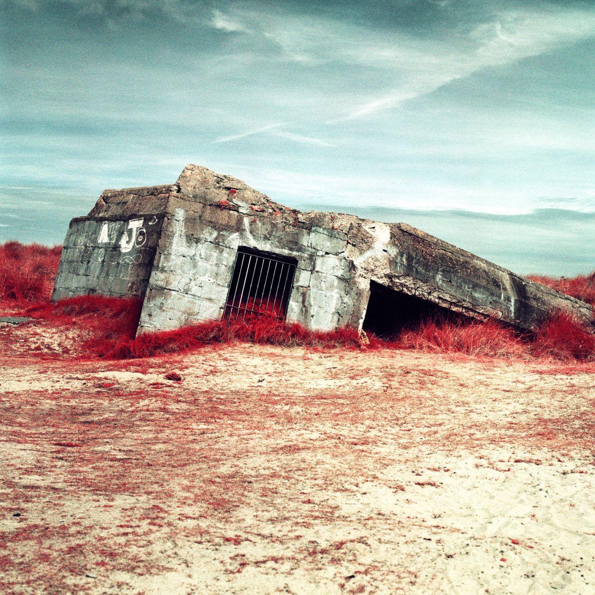 Infrared photographs retell horrors of D-Day