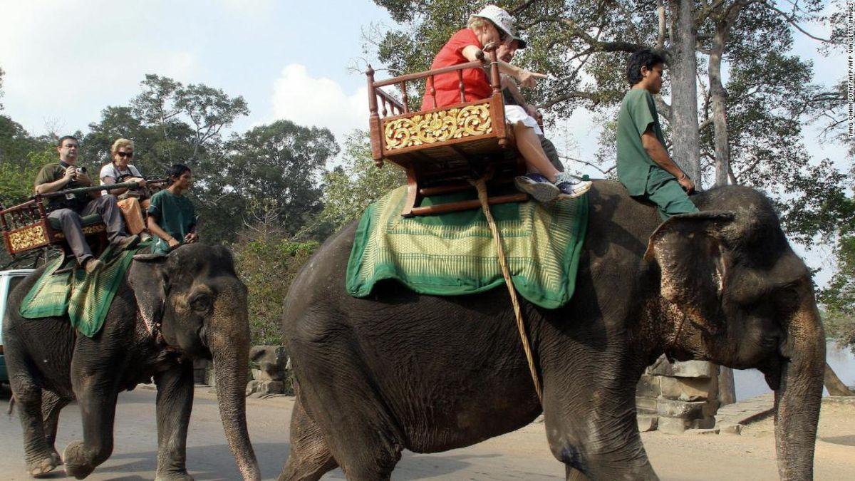 Καμπότζη για την απαγόρευση ελέφαντα βόλτες στο Angkor Wat