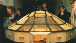 Theater of the World, 1993 Wood and metal structure with warming lamps, electric cable, insects (spiders, scorpions, crickets, cockroaches, black beetles, stick insects, centipedes), lizards, toads, and snakes, 150 x 270 x 160 cm