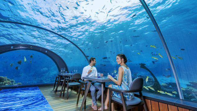 Maldives Hurawalhi Undersea Restaurant 4