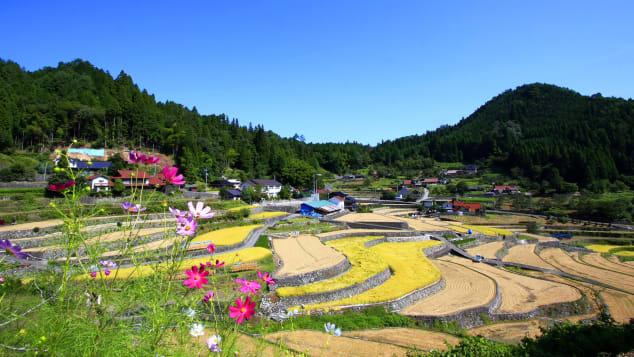 Nhật Bản đẹp Ini Rice Terrace Thị trấn Aki Ota