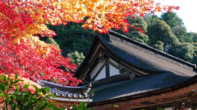 đẹp Nhật Bản Saimyo-ji Temple Hồ Biwa Shiga