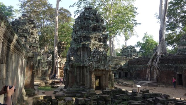 Spot these fIg tree roots at Angkor Wat, Cambodia.
