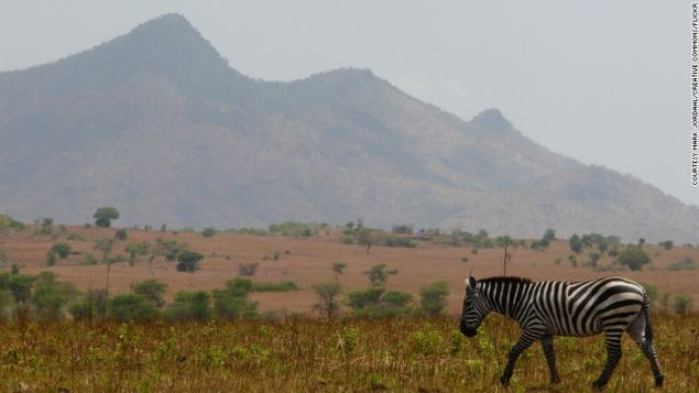 Explore the rugged Savannah of Kidepo.